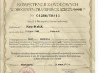 Certfikat kompetencji Karol Malicki